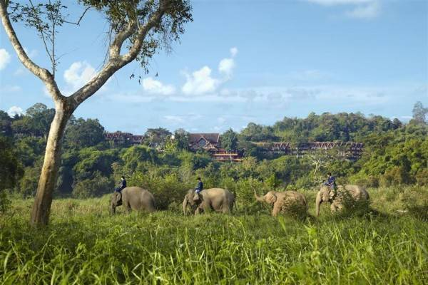 Hotel Anantara Golden Triangle Elephant Camp & Resort