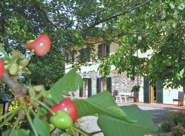 Hotel Il Gelso
