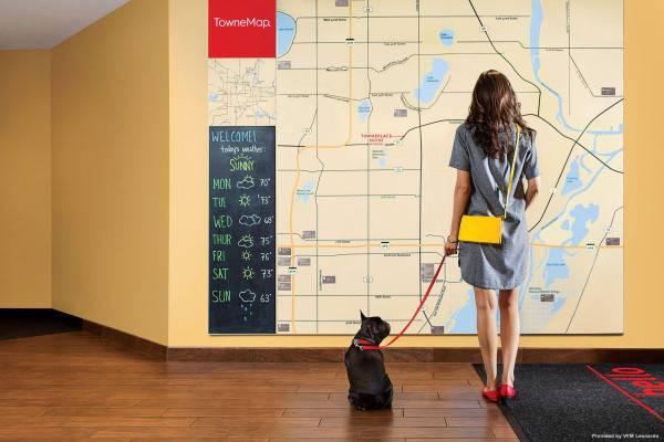 Hotel TownePlace Suites Detroit Belleville