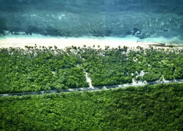 Hotel Papaya Playa Project