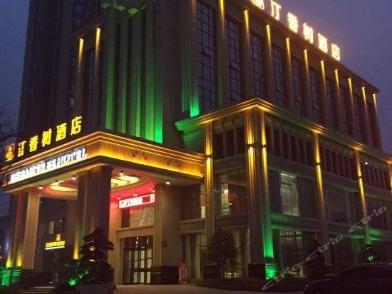 Dream Tree Hotel