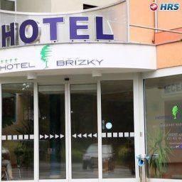 Hotel Břízky