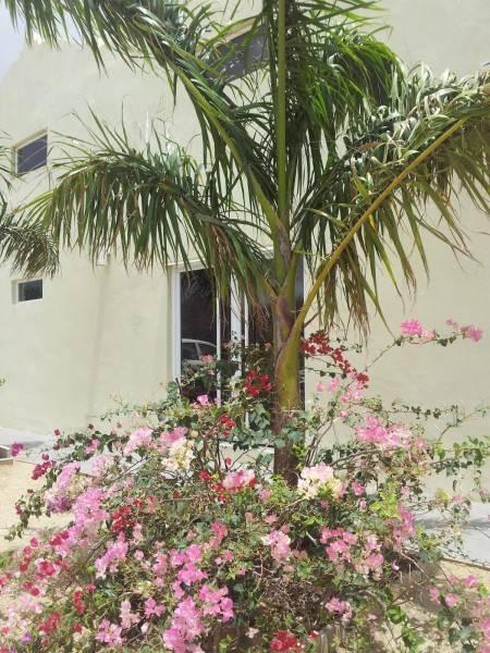Hotel Agua Clara Eco Suites