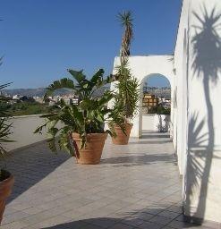 Hotel Cuore di Palme