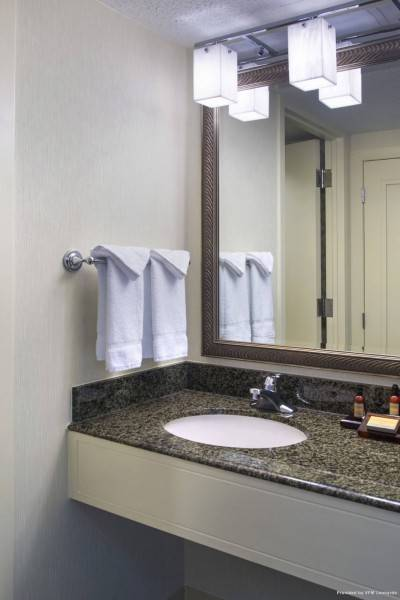 Hotel Norfolk Waterside Marriott