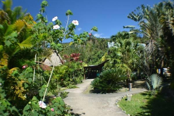 Hotel Omega Tours Adventure Company & Eco Jungle Lodge