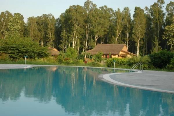 Hotel Jim's Jungle Retreat