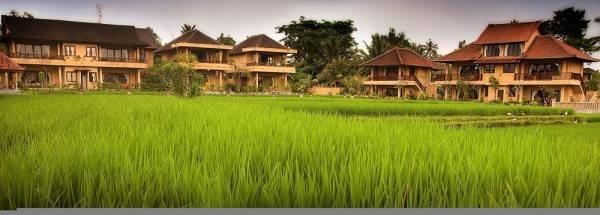 Hotel Sri Bungalows Ubud