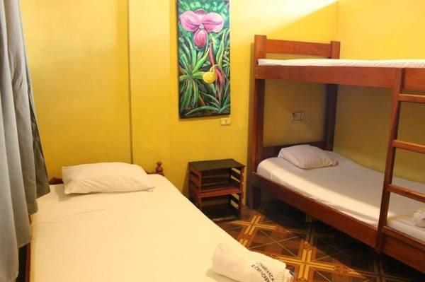 Hotel Sachahuasca Backpacker Casa Hospedaje