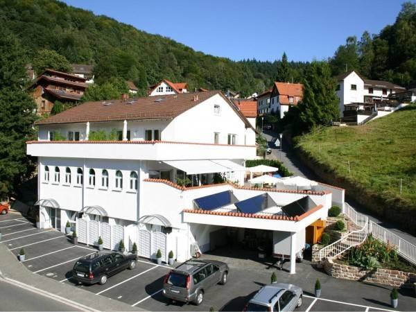 Hotel Zum Löwen Heidelberg