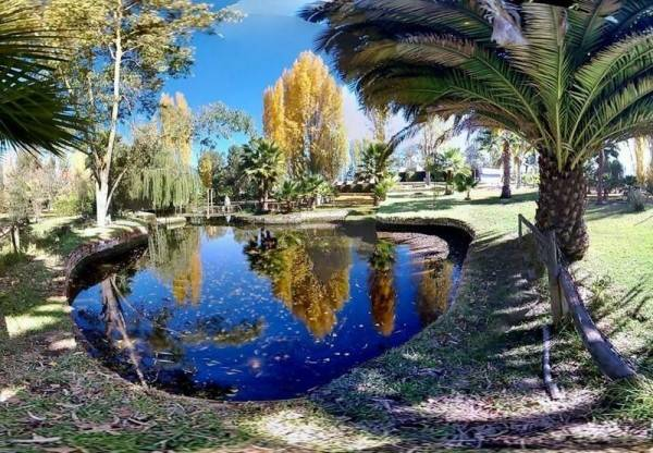 Apart Hotel Jardín del Lago