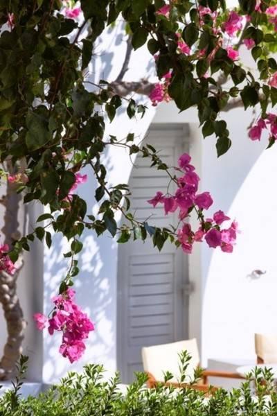 Hotel Dionysos Sea Side Resort