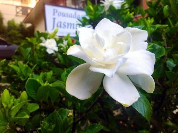 Hotel Pousada Jasmim