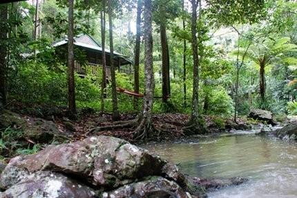 Hotel Narrows Escape Rainforest Retreat