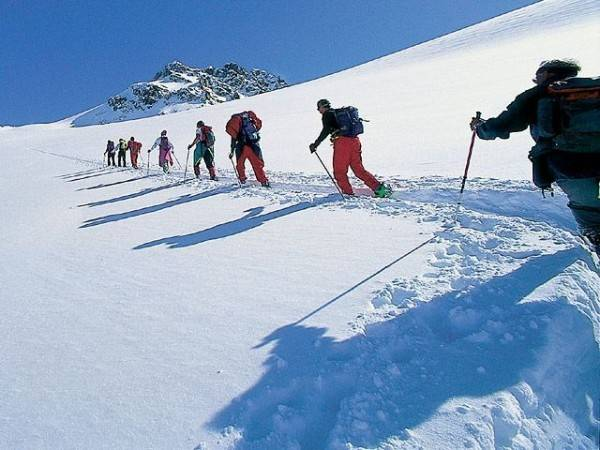 Alpenrose im Virgental in Osttirol Pension