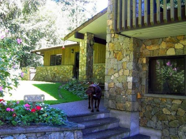 Hotel Misty Meadows Bed and Breakfast