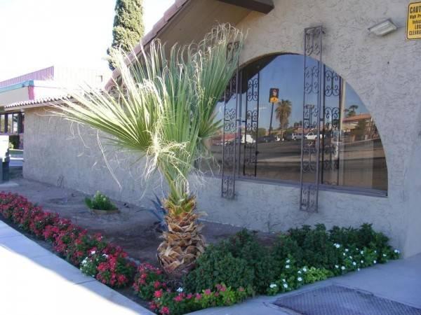 Willow Inn & Suites