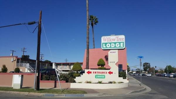 Hotel Willow Tree Lodge