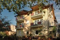 Hotel Grüner Baum Gasthof