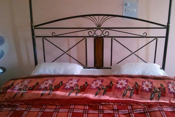 Hotel Jiyo Kanatal Camp and Resort