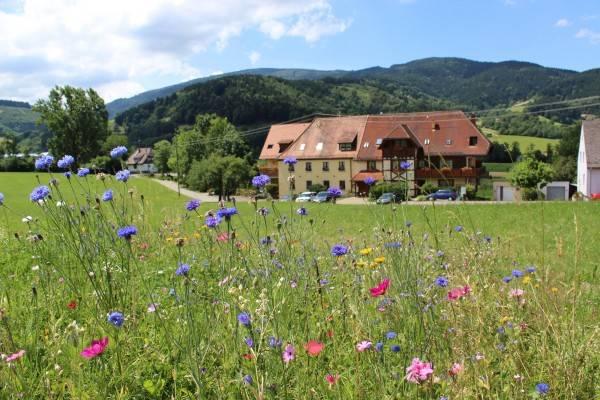 Hotel Zum Schützen Landgasthof