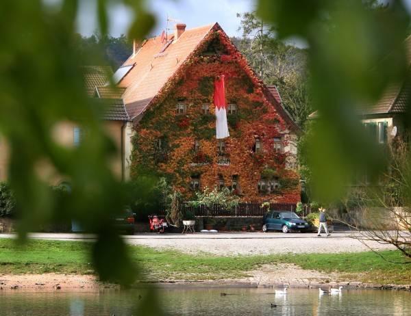 Hotel Schiff Gasthof -Businesszimmer-