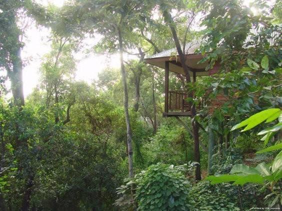 Hotel Thala Beach Nature Reserve