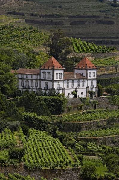 Hotel Casa das Torres de Oliveira