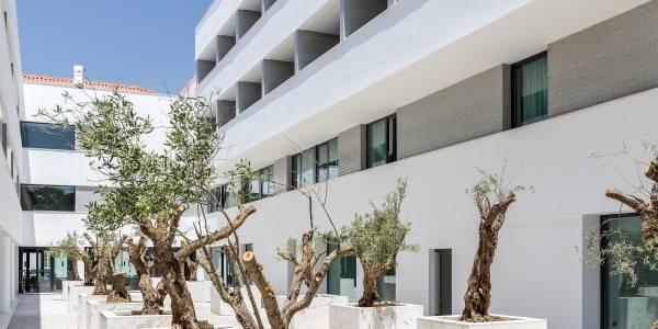 Hotel Evora Olive