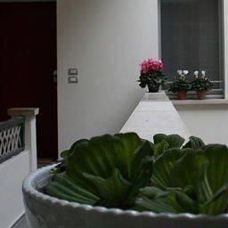 Hotel Agora Residenza Apartments