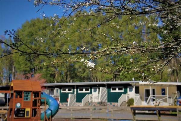 Hotel Rotorua Hideaway Lodge