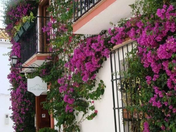Hotel La Villa Marbella