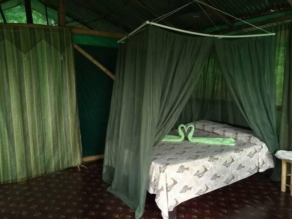 Hotel Isla Violin Eco Lodge