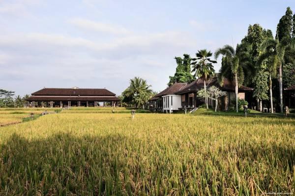 Hotel The Chedi Club Tanah Gajah