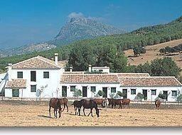 Hotel El Horcajo