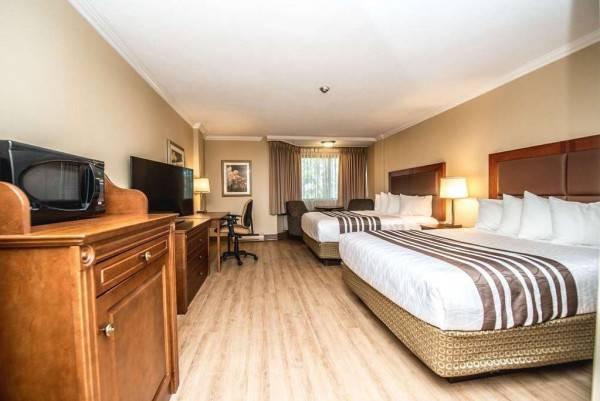 Hotel Best Western Plus Ottawa City Centre