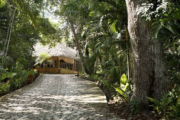 Jungle Lodge Hotel