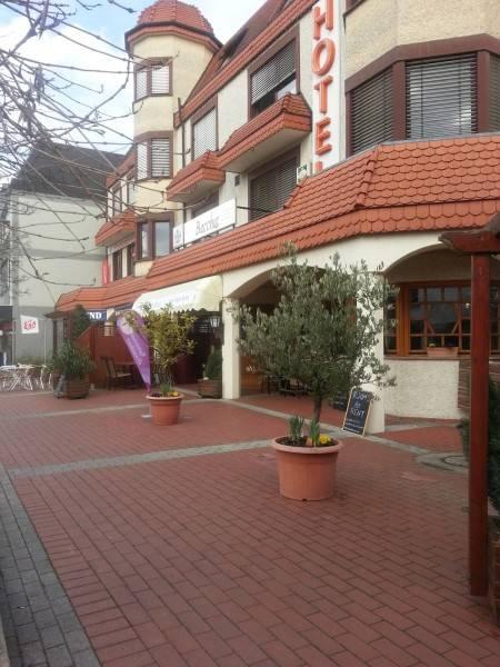 Hotel Pälzer Buwe