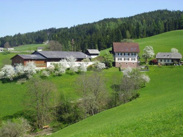 Hotel Bauernhof Sattelbauer