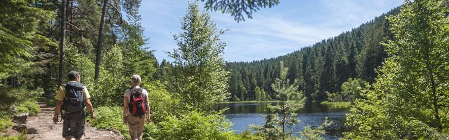 Sommerurlaub mit HRS! Reichhaltige Natur, abwechslungsreiche Ausflugsziele, beste Unterkünfte und günstiger Preis: Der Schwarzwald wartet auf Sie!