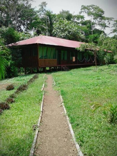 Hotel Amazon Lodge Tambopata