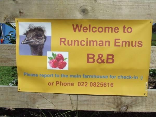 Hotel Runciman Berries and Emus B&B