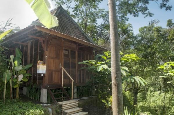 Hotel DD Ubud Villa