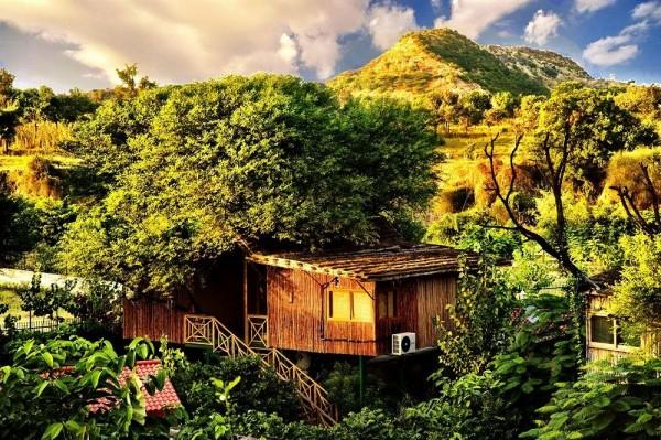 Hotel The Tree House Resort
