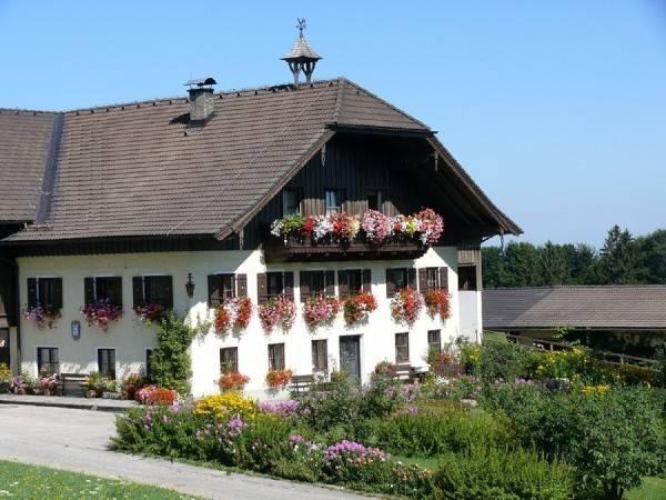 """Hotel Bauernhof """"Hinterreith"""""""
