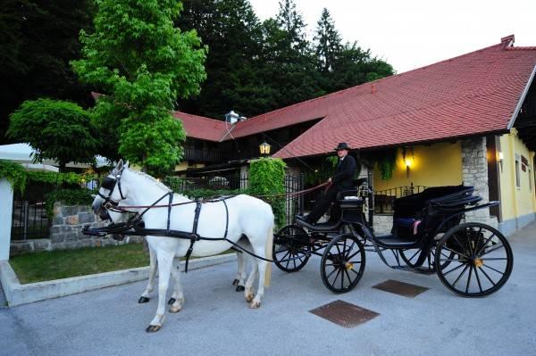 Hotel Vila Podvin
