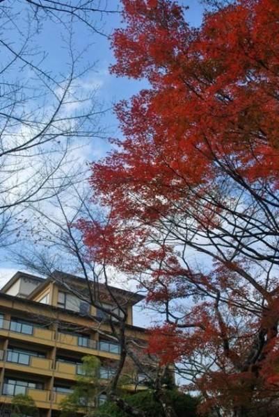Hotel BIWAKO HANAKAIDO