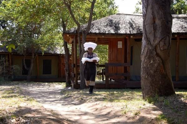 Hotel Shindzela Tented Safari Camp