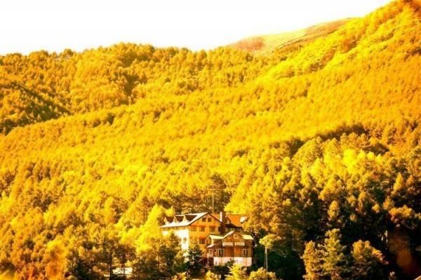 Alpen Spa Hotel Andermat