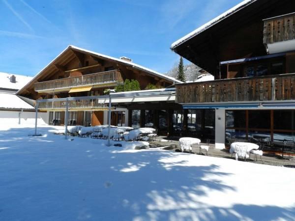 Hotel Alpine Lodge Gstaad